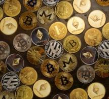 Technologie blockchain : hausse considérable des nouvelles créations de crypto-monnaies