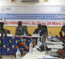 Un réseau régional de fact-checking contre la désinformation en Afrique de l'ouest en gestation