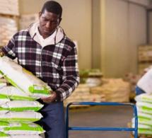 Le Mécanisme africain de financement du développement des engrais veut mobiliser plus de ressources pour investir dans de nouveaux projets