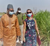 Moussa Baldé, ministre sénégalais de l'Agriculture et de l'Equipement rural, Olga Cabarga, ambassadrice du Royaume d'Espagne et Dorota Panczyk-Piqueray cheffe de Cooperation de la délégation de l´Union Européenne (UE) au Sénégal.