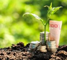 Financement de l'Agriculture en Afrique.