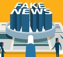 Afrique : des indices pour repérer la désinformation en ligne