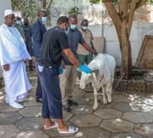 Tabaski 2021-Sénégal: le chef de l'Etat a pris une mesure qui va soulager les travailleurs