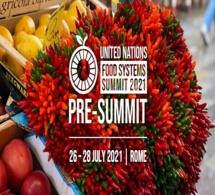 Plus de 100 pays discutent de leurs visions de l'avenir alimentaire national pour accélérer l'action mondiale avant le sommet de septembre
