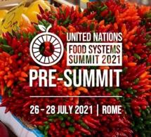 Les dirigeants africains donnent la priorité aux politiques de soutien aux jeunes et aux femmes lors du pré-sommet des Nations unies sur les systèmes alimentaires