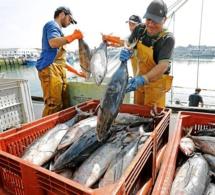 Pêche: les dirigeants africains invités à se montrer ferme dans ses négociations sur un nouvel accord avec l'union européenne