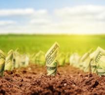 Afrique: lancement imminente d'une nouvelle initiative de la Bad visant à intégrer le capital naturel dans le financement du développement