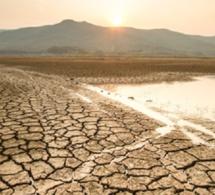 Le Giec relève le rôle vital du secteur privé dans le financement de la résilience climatique