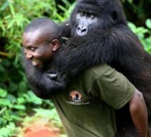 Exploration pétrolière dans le parc Virunga.