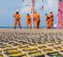 Développement des gisements de pétrole et de gaz : le Sénégal dans la bonne direction