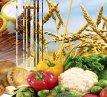 Conflits et mauvais temps compromettent la sécurité alimentaire
