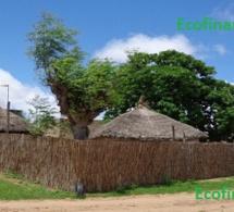 Kebemer, une ville aux multiples facettes